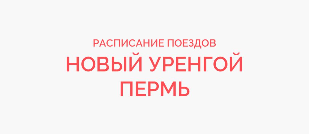 Поезд Новый Уренгой - Пермь