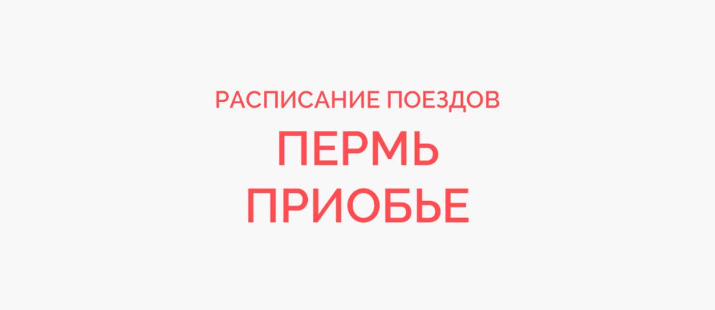 Поезд Пермь - Приобье